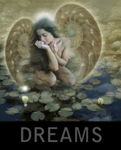 Gallery_buttons_dreams