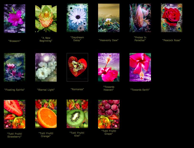 minis_florals