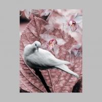 CopyrightCarolynQuan_Peace