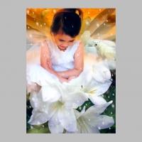 CopyrightCarolynQuan_SweetestAngel